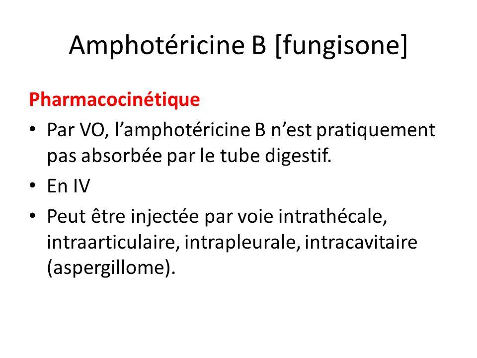 Amphotéricine B [fungisone]